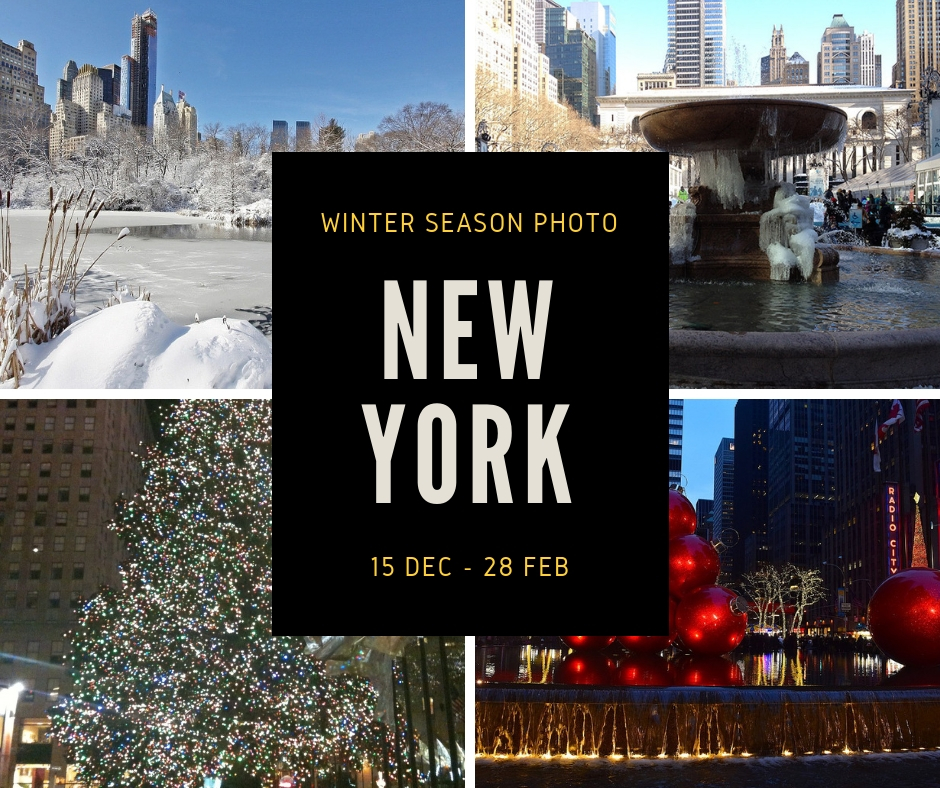 winter ohoto new york-C